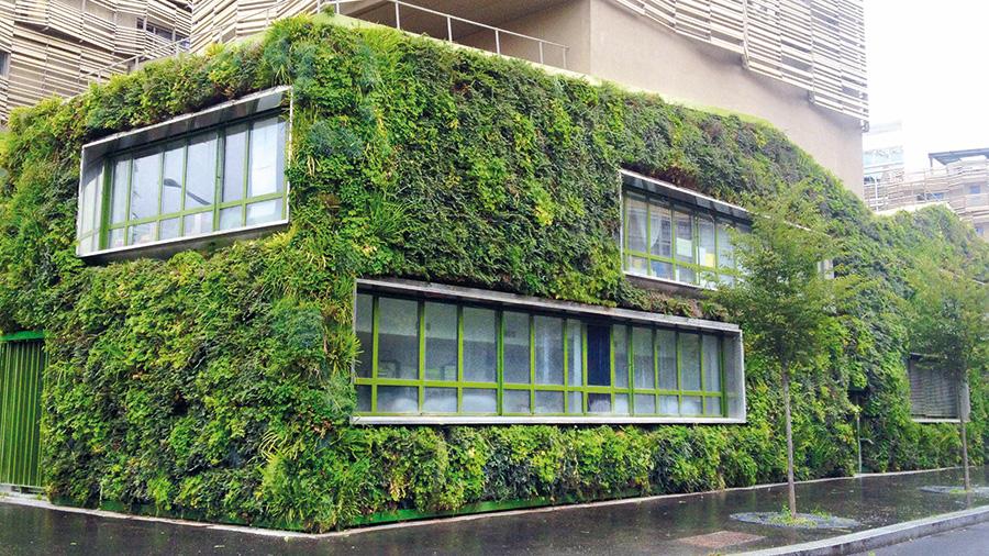 Une façade végétale durable
