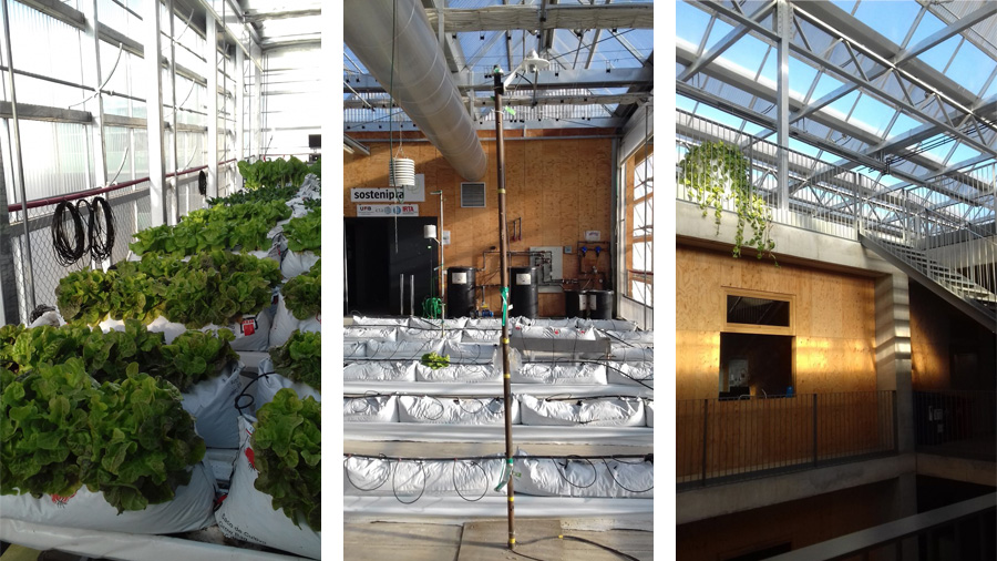 New rooftop greenhouses in Europe